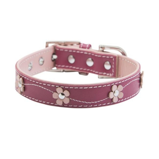 Picture of Lucy Pink Dog Collar Size Large Pink | Free Delivery